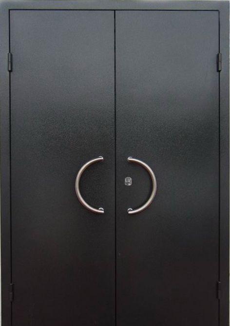 металлическая офисная дверь двухстворч